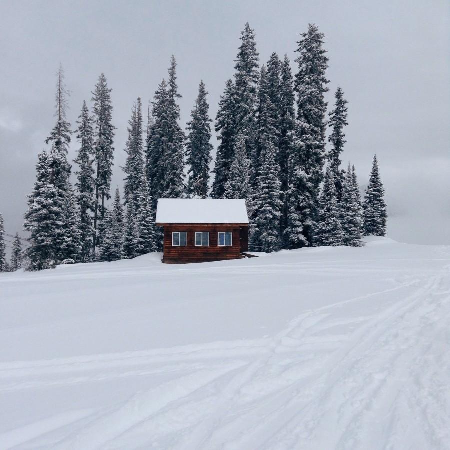 Snowdrifters