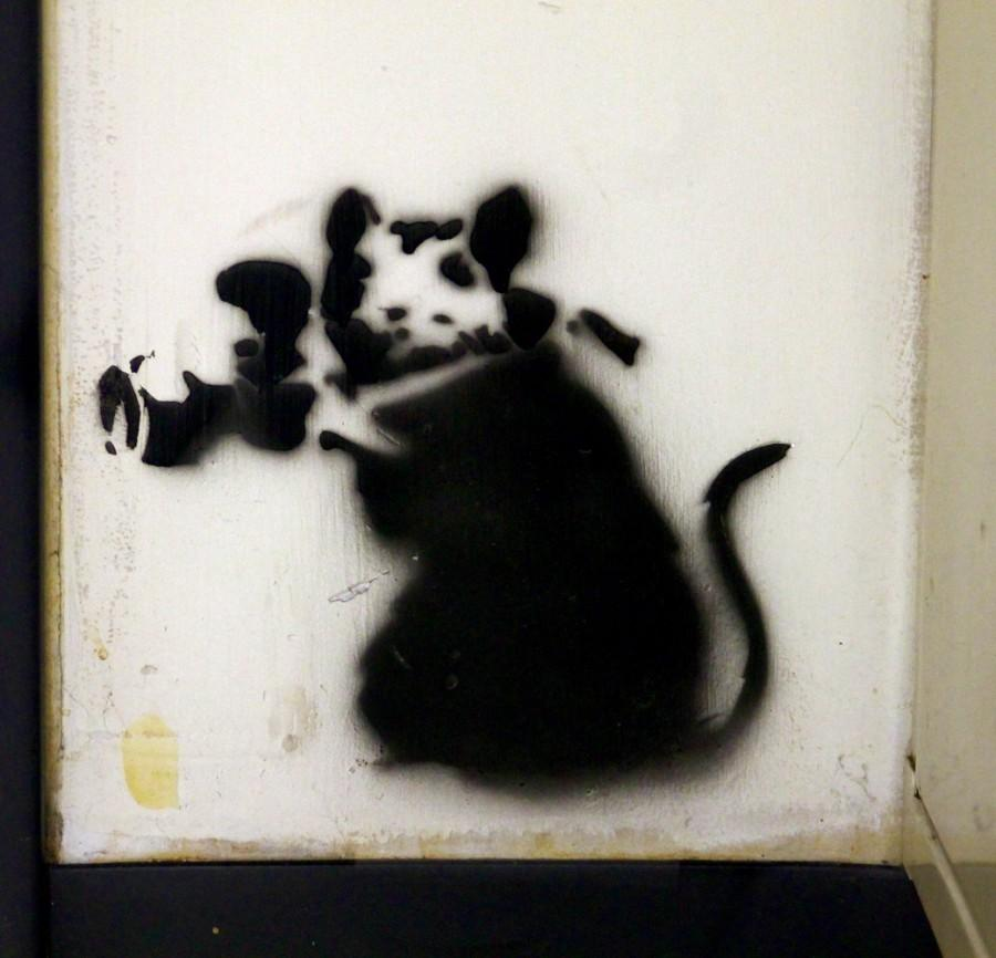 One of the many Banksy Mice located around the interior of Durango High School