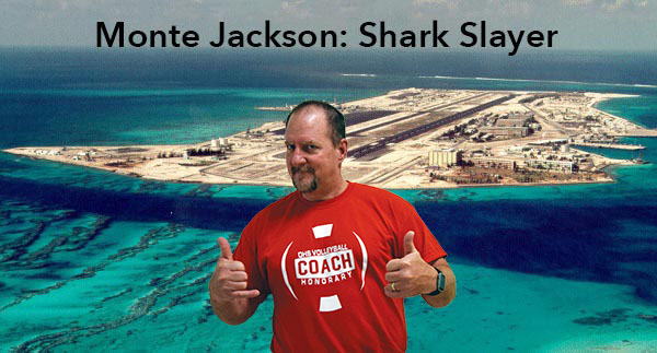 Mr. Jackson: Chemical Weapons Destroyer, Shark Fighter