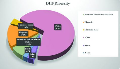 The Faces of DHS: How Diverse is out School