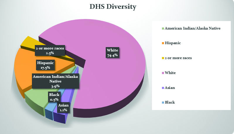 The+Faces+of+DHS%3A+How+Diverse+is+out+School